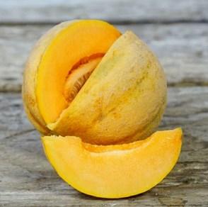 Melon, Delicious-51