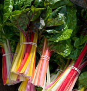 Swiss Chard, Bright Lights
